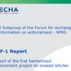 BPR REF- report